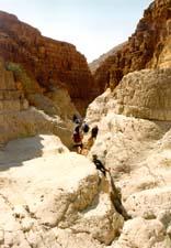 1_d-wadi-book2-25