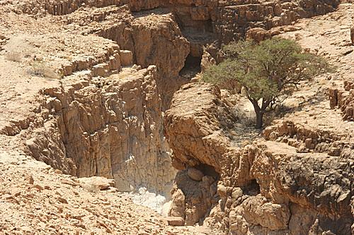 Wadi mishmar 2