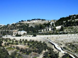 Mt of Olives and Kidron Valley from southwest, tb n012801